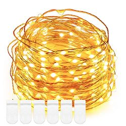 Fairy string Lights, DecorNova 5 Feet 30 LED Battery Operated Micro Copper Wire String Lights fo ...
