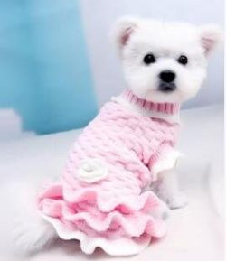BENMEI New Pet Clothes For Dogs Pet Clothes Teddy Bichon Princess Dress Puppy Dog Cat Knitted Sw ...