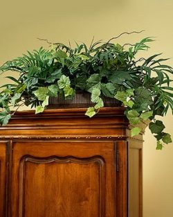 Palm & Ivy Armoire Silk Planter