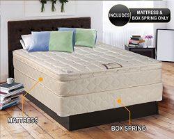 Dreamy Collection Medium Firm Eurotop (Pillowtop) Queen 60″x80″x10″ Mattress a ...