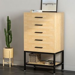 5-Drawer Dresser, LITTLE TREE Tall Chest with Open Storage, Works as File Cabinet & Collecti ...