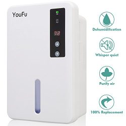 Dehumidifier for Home,Powerful Portable Automatic Dehumidifier with 1500ml Water Tank,Winter Sta ...