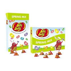 Jelly Belly 1.31 LB Spring Mix Jelly Beans Jumbo Easter Gift Box