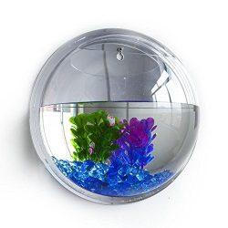 Wall Mounted Fish Tank Bowl Vase Aquarium Plant Pot Home Decor