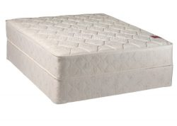 Continental Sleep, 8-inch Fully Assembled Gentle Firm Orthopedic Mattress And 8-inch Box Spring/ ...
