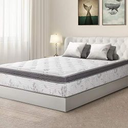 Olee Sleep 12 inch Hybrid Euro Box Top Pocket Spring Mattress (King)