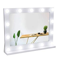 Waneway Vanity Mirror with Lights, Hollywood Lighted Makeup Mirror with 14 Dimmable LED Bulbs fo ...