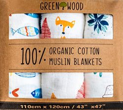 Organic Swaddle Blanket – 100% Organic Cotton – 3 Pack 43″ x 47″ Ultraso ...